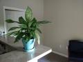 Indoor Photo